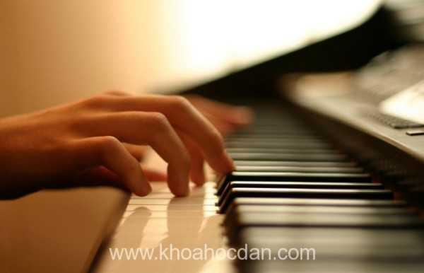 Khóa dạy học đàn guitar organ piano và thanh nhạc ở đâu rẻ tốt nhất tại TPHCM