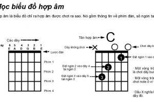 Cách tìm các hợp âm đàn Guitar dùng trong một bài nhạc