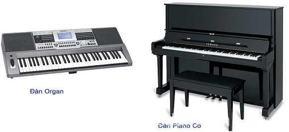 Đàn piano và đàn organ khác nhau như thế nào