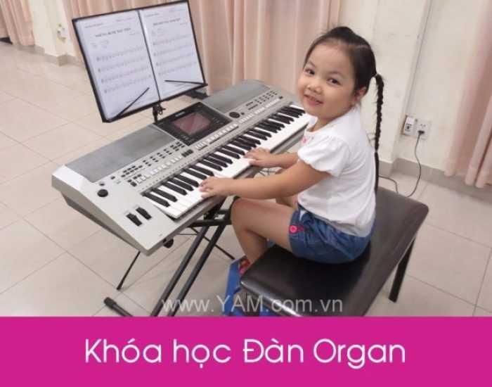 Day Hoc Dan Organ Gia Re Tot Nhat O Dau Tphcm 2 2