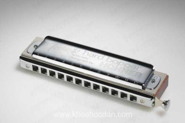 Mua kèn harmonica ở đâu tại TPHCM giá rẻ tốt uy tín