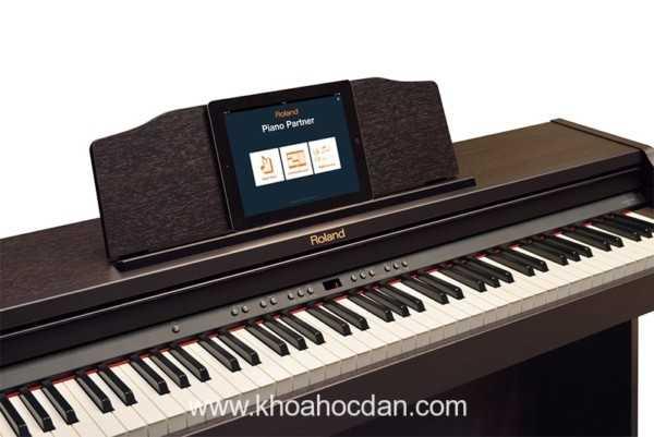 Những cây đàn piano điện màu đen được yêu thích nhất