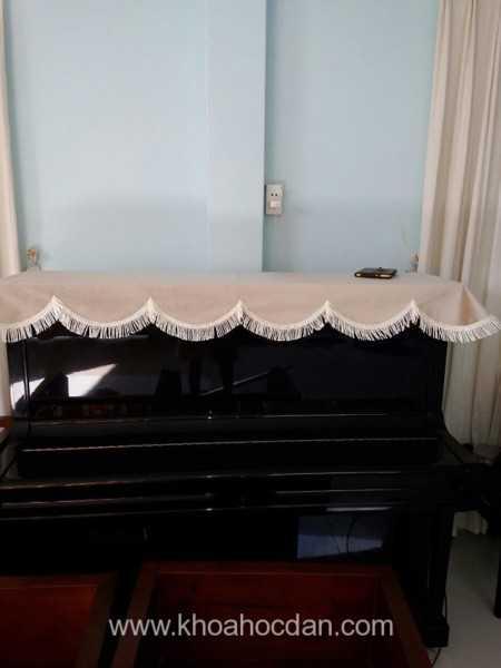 Những phụ kiện không thể thiếu khi chơi đàn Piano