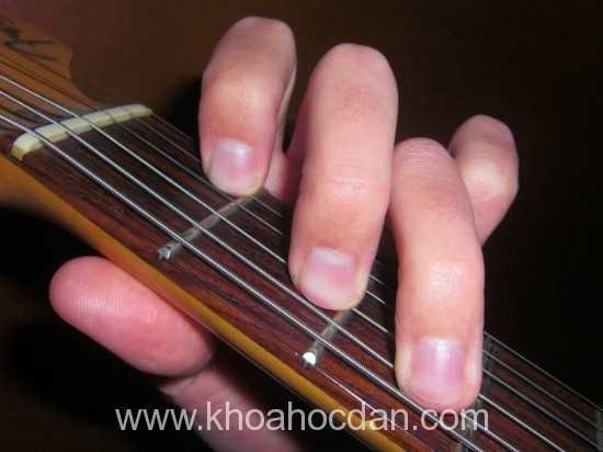 Những sai lầm khi bấm hợp âm đàn guitar