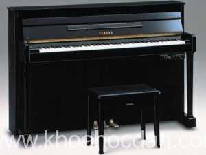 Khóa học đàn Piano online, qua mạng, trực tuyến