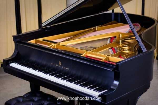 Phân loại đàn piano cơ trên thị trường