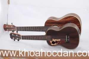 Học phí khóa đàn ukulele giá bao nhiêu tiền