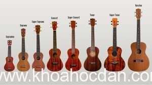 Mua đàn ukulele ở đâu giá rẻ tại TPHCM tốt uy tín