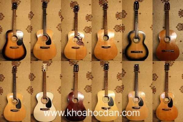 Video youtube hướng dẫn tự học đàn ukulele miễn phí
