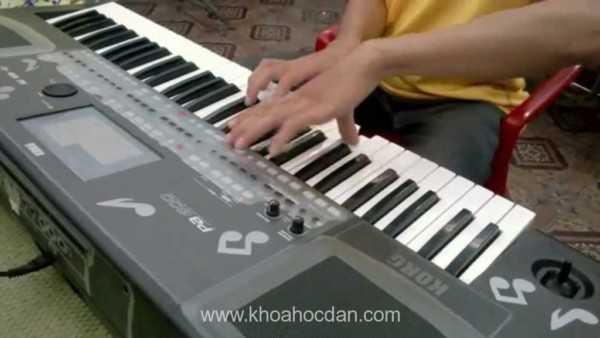 Trung tâm dạy học đàn organ ở quận Tân Bình, Bình Thạnh, Phú Nhuận